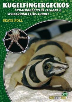 Kugelfingergeckos: Sphaerodactylus