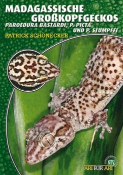 Madagassische Großkopfgeckos: Paroedura bastardi, P. picta und P. stumpffi