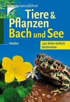 Tiere & Pflanzen, Bach und See: 140 Arten einfach bestimmen