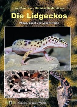 Lidgeckos - Pflege, Zucht und Lebensweise