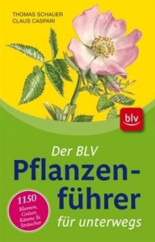 Der BLV Pflanzenführer für unterwegs