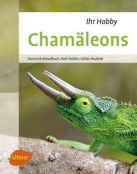 Ihr Hobby Chamäleons