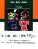 Anatomie der Vögel - Klinische Aspekte und Propädeutik. Zier-, Greif-, Zoo-, Wildvögel und Wirtschaftsvögel