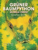 Grüner Baumpython - Morelia viridis