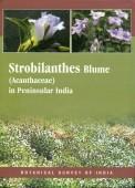 Strobilanthes Blume (Acanthaceae) in Peninsular India