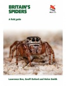 Britain's Spiders – A Field Guide