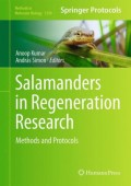 Salamanders in Regeneration Research - Methods and Protocols