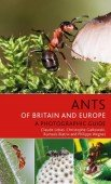 Ants of Britain and Europe A Photographic Guide
