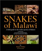 Snakes of Malawi